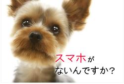 スクリーンショット 2012-06-06 20.56.20.png